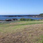 海岸敷地30m(周辺)