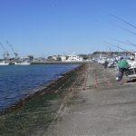 船形漁港 430m(周辺)
