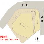 地形図(現況有姿)(地図)