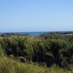 海側の眺望(周辺)