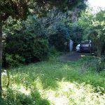 庭から門(外観)